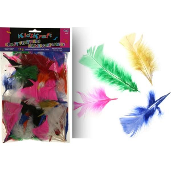 Πούπουλα (Φτερά) χειροτεχνίας σε χρώματα 12gr.