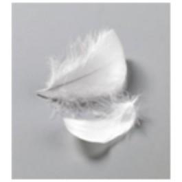 Πούπουλα (Φτερά) χειροτεχνίας σε χρώματα 10gr Efco